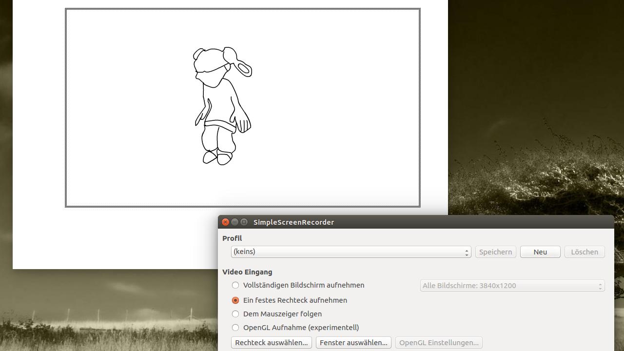 Abfilmen einer Flash-Animation